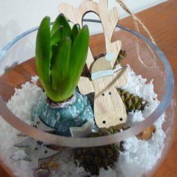 Vase neige et bulbe
